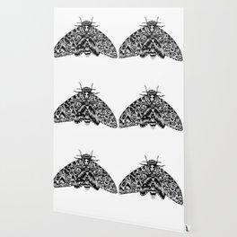 Death's Head Hawk Moth with Cat Skull Wallpaper