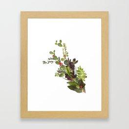 Abstract Succulent Bouquet Framed Art Print