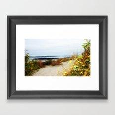 Coastal Wildflowers  Framed Art Print