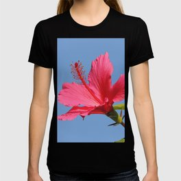 The Neighbor's Pink Hibiscus T-shirt