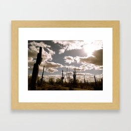Saguaro National Park, Arizona Framed Art Print