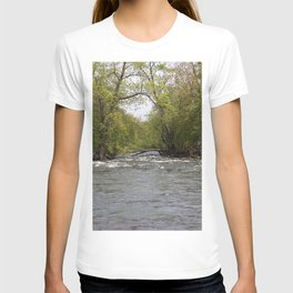 Springtime on the Fox River T-shirt