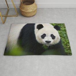 Giant Panda up close Rug