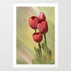 Spring Red Art Print