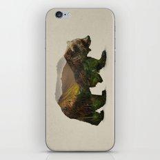 North American Brown Bear iPhone & iPod Skin