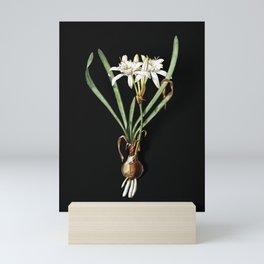 Vintage Sea Daffodil Botanical Illustration on Black (Portrait) Mini Art Print