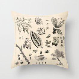 Cacao Vintage Illustration Throw Pillow