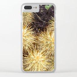 Super Bloom Cactus 7381 Clear iPhone Case