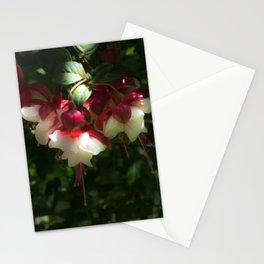 Gorgeous Fuchsias Stationery Cards