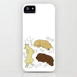 Sleeping Dogs iPhone Case