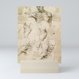 Leonardo da Vinci - Anatomy of the shoulder and neck Mini Art Print