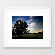 Evening Meadow Framed Art Print