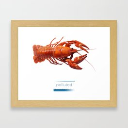 Polluted - Crawfish Lobster Framed Art Print