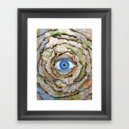 Seeing Through Illusions  Framed Art Print