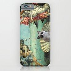 Birth Of Grumpy Cat iPhone 6 Slim Case
