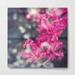 Pink and Gray Metal Print