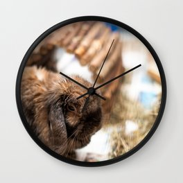 Cute lop eared bunny rabbit Wall Clock
