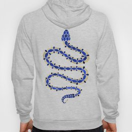Navy & Gold Serpent Hoody