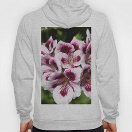 Purple Geraniums Flowers Hoody