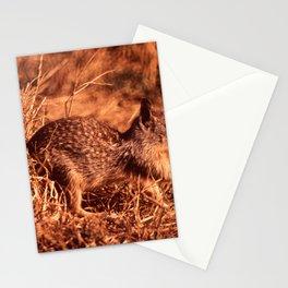 CALIFORNIA POINT LOBOS STATE PARK NARA 543265 Stationery Cards