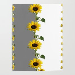 LINEAR YELLOW SUNFLOWERS GREY & WHITE ART Poster