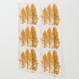Aspen Trees #decor #buyart #society6 Wallpaper