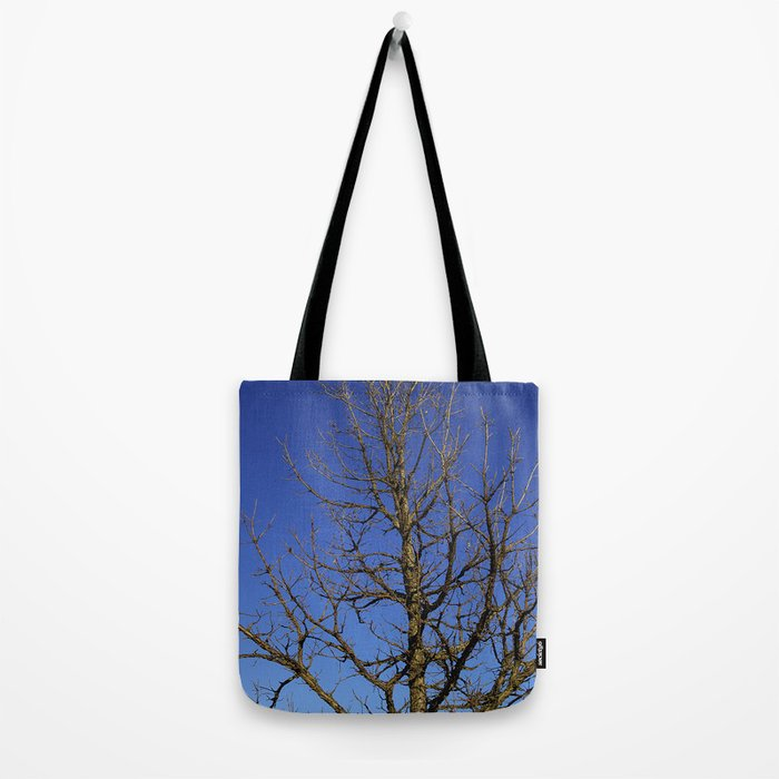 Bur Oak, Quercus macrocarpa, Wisconsin tree, prairie, savanna Tote Bag