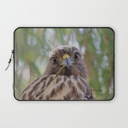 Hawk Eyes in the Willow Laptop Sleeve