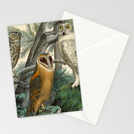 3 Owls Stationery Cards