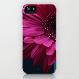 Bright Pink Gerbera iPhone Case