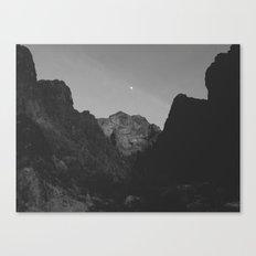 Palm Canyon Canvas Print