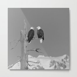 Perched With A View Duo - B & W Metal Print