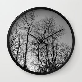 Black and white naked trees Wall Clock