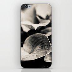 Flirt iPhone & iPod Skin