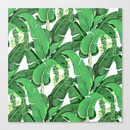 banana leaves brazilliance Canvas Print
