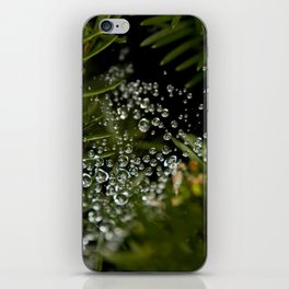 Nature's Ornaments iPhone Skin