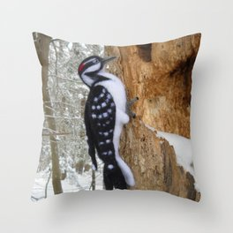 Hairy Woodpecker in the Maine Woods Throw Pillow