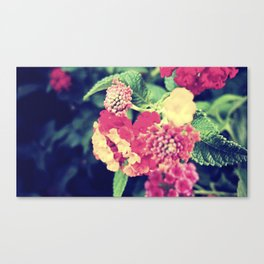 oh to be a bee Canvas Print
