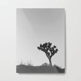 JOSHUA TREE VII Metal Print