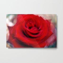 Singl Red Rose Metal Print