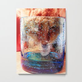 Curiosity and the cat Metal Print