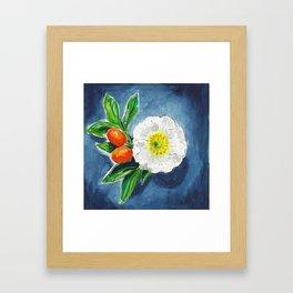 Day 17 - Kumquat blossom Framed Art Print