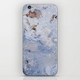 frozen lakes II iPhone Skin