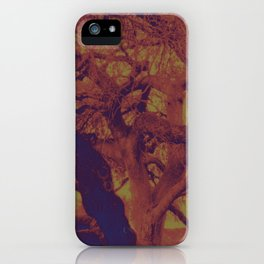 100 Year Old Alamo Tree - Colorized iPhone Case