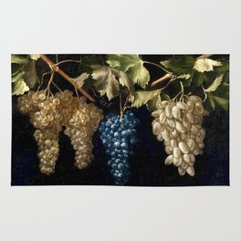 Grape Vines : Vintage Painting Rug