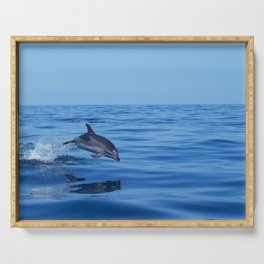 Spotted dolphin jumping in the Atlantic ocean Serving Tray