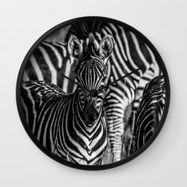 Zebras in Black and White Wall Clock