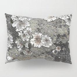Lichen art on granite Pillow Sham