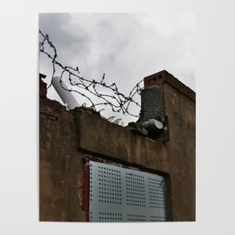 Urban Landscape - Barbed Wire and Glass Poster