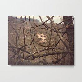 Through the branches Metal Print